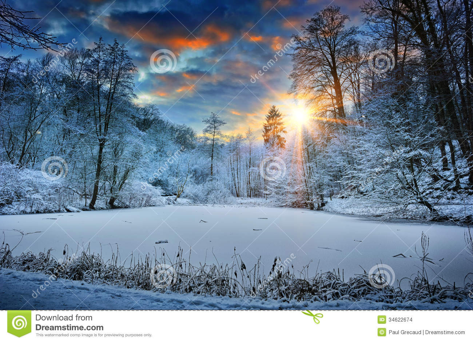 Tramonto sopra il lago della foresta di inverno