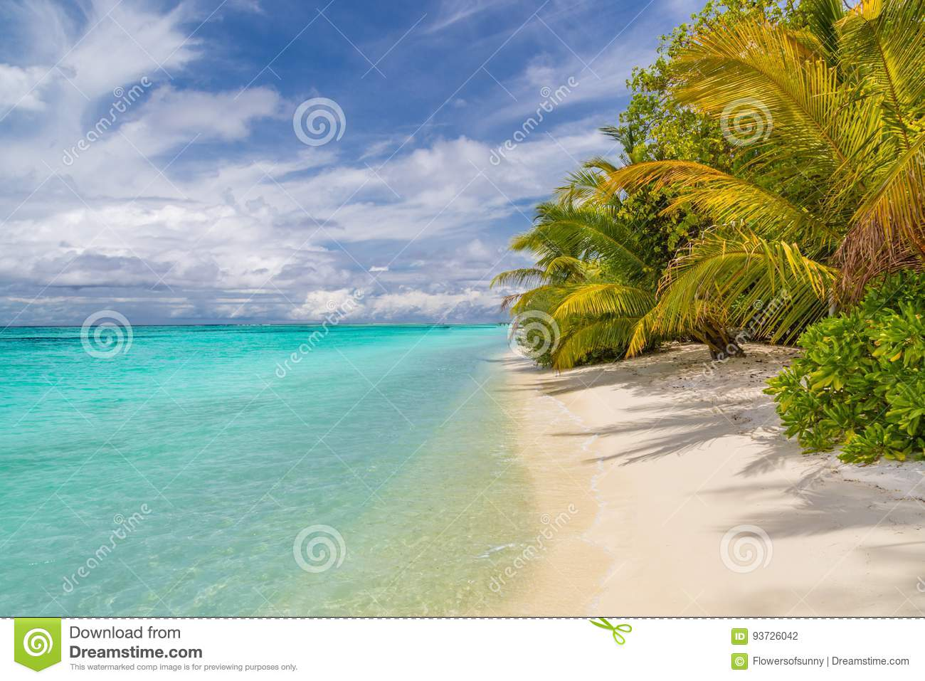 Exotic Tropical Beach Landscape For Background Or Wallpaper Design Of Summer
