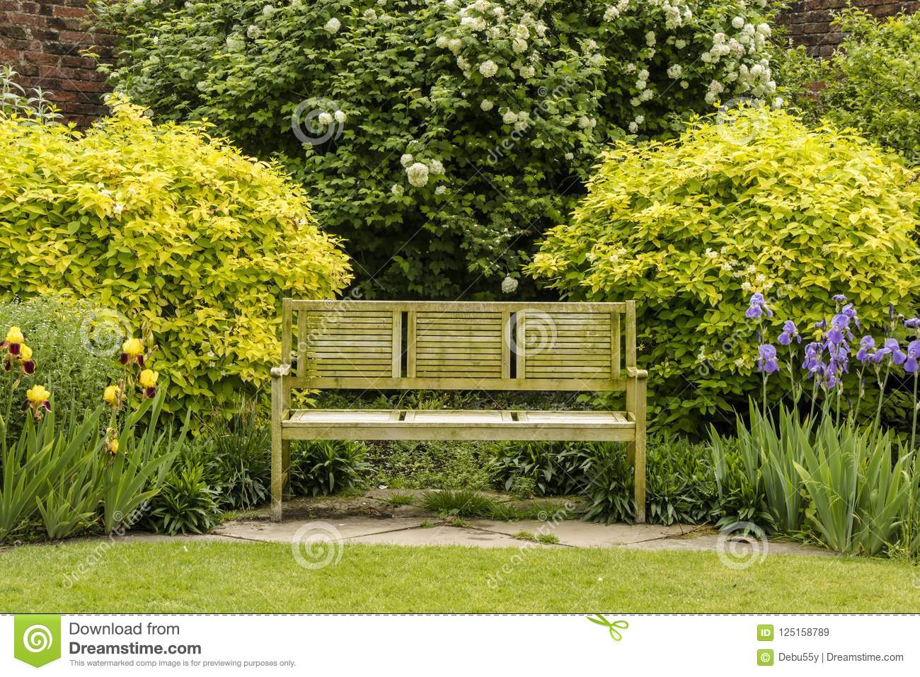 Remarkable Tranquil Garden Corner With Wooden Bench Stock Image Theyellowbook Wood Chair Design Ideas Theyellowbookinfo
