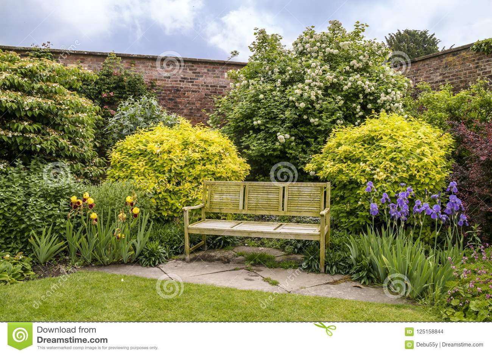 Fine Tranquil Garden Corner With Wooden Bench Stock Photo Theyellowbook Wood Chair Design Ideas Theyellowbookinfo