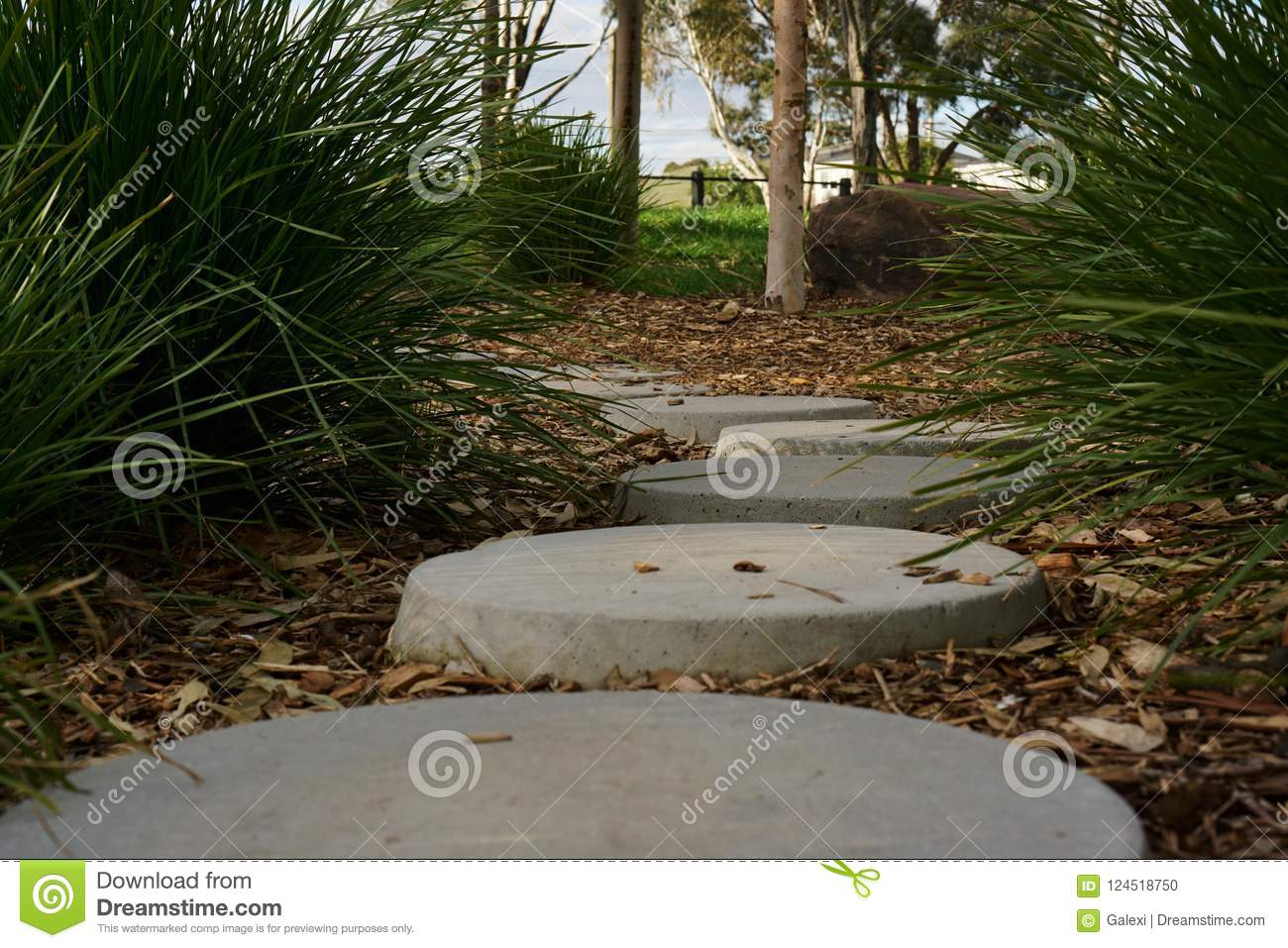 Tranquil peaceful stone path