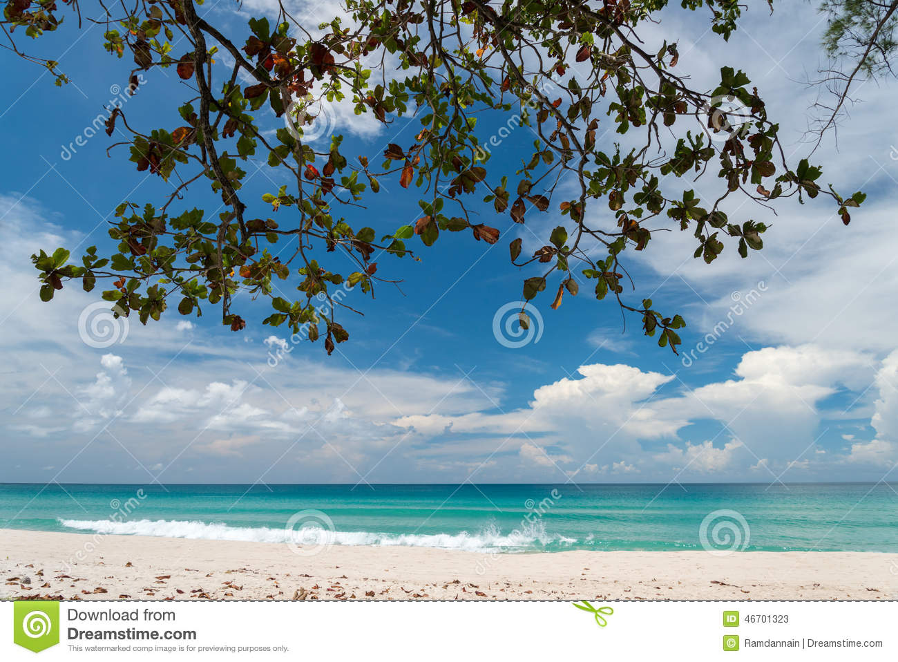 Tranquil View of Foliage, Turquoise Sea and White Sandy Beach