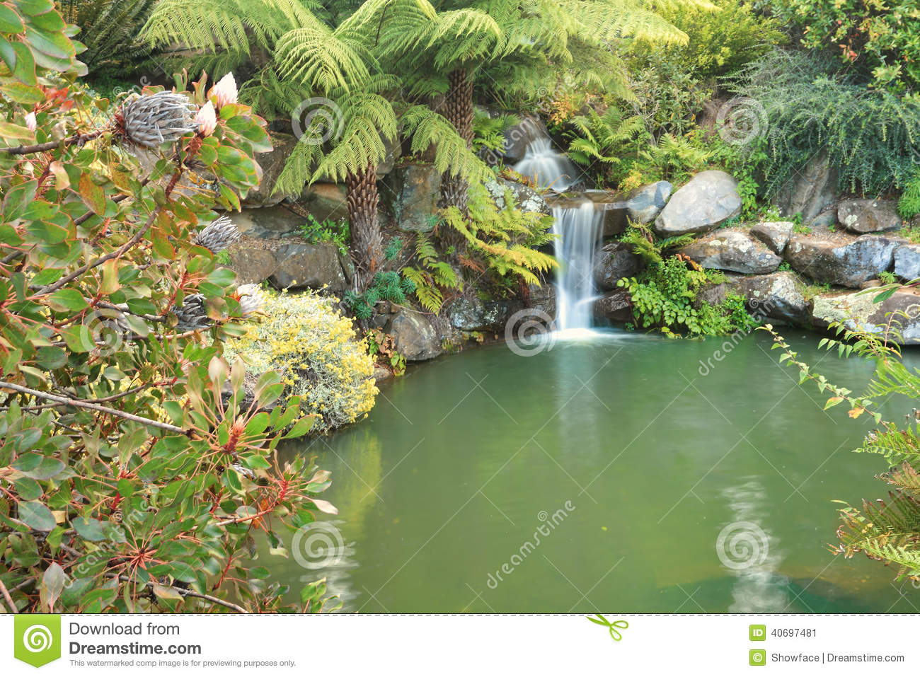 Tranquil waterfall in lush environment mt tomah australia for Waterfall environment