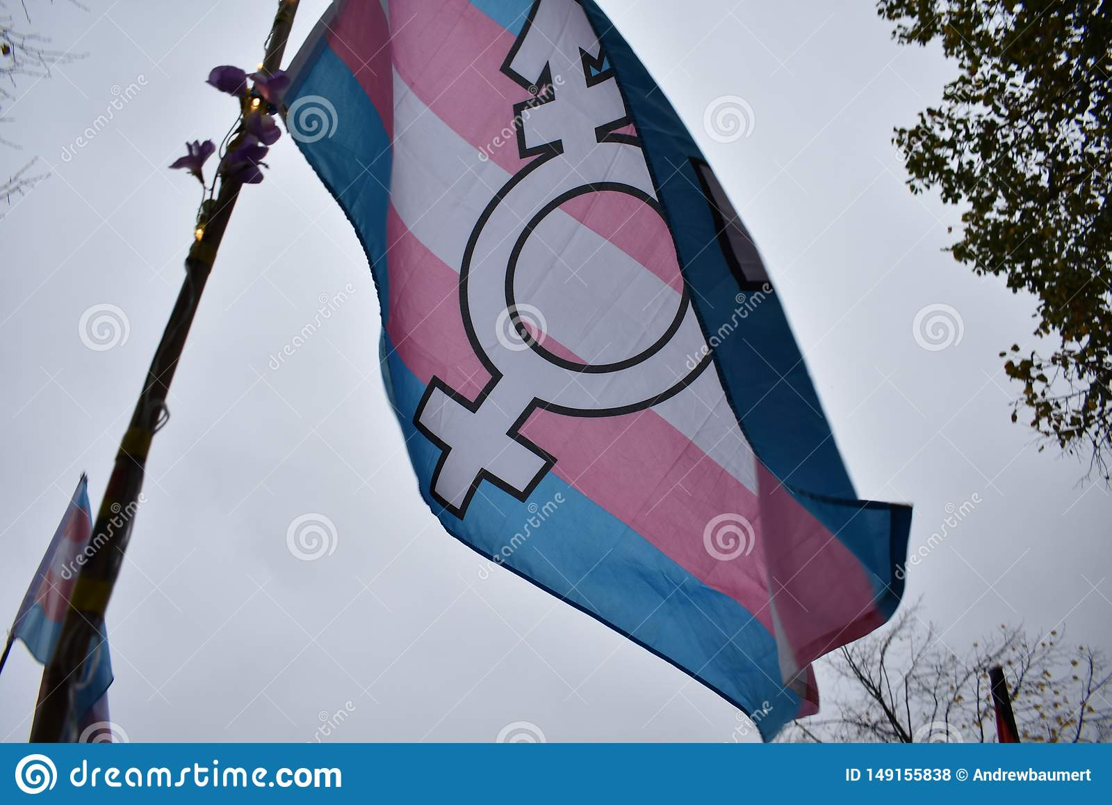 Trans* dumy flaga przy demonstracją w Berlin