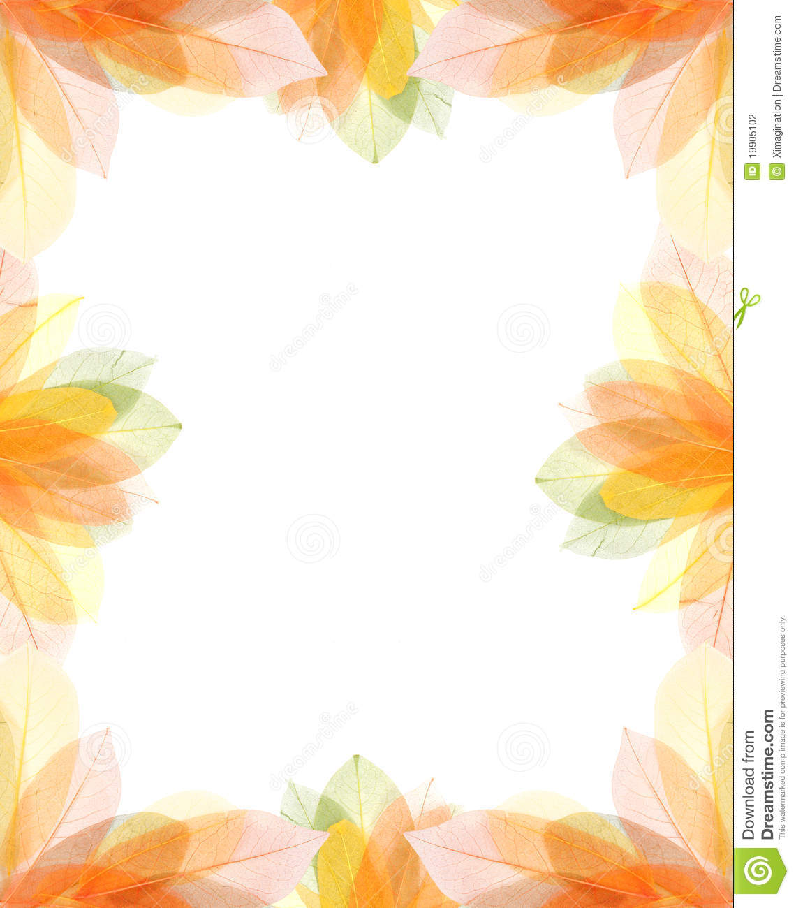 transparent autumn leaves frame