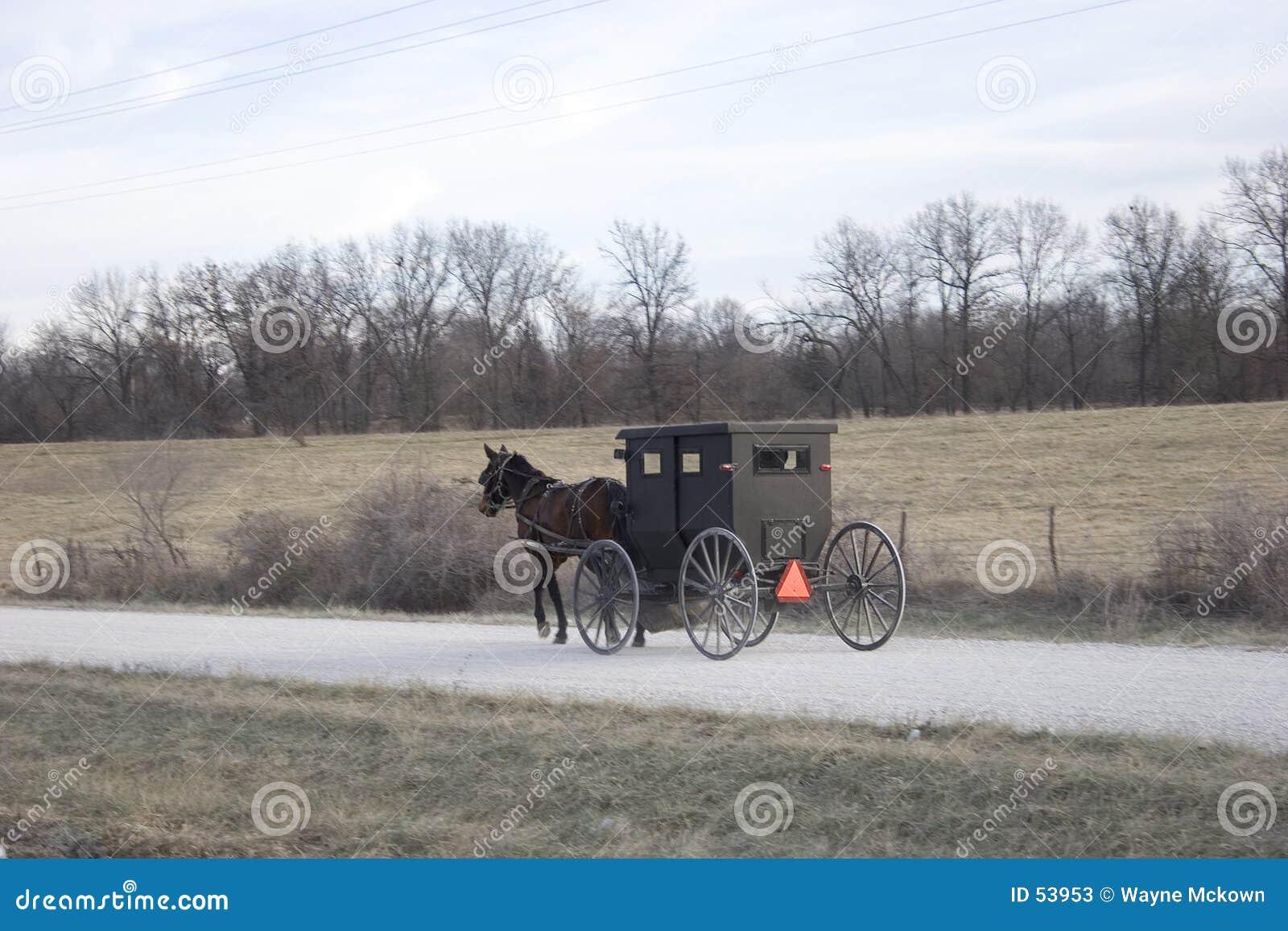 Download Transport amish image stock. Image du poussette, domestique - 53953