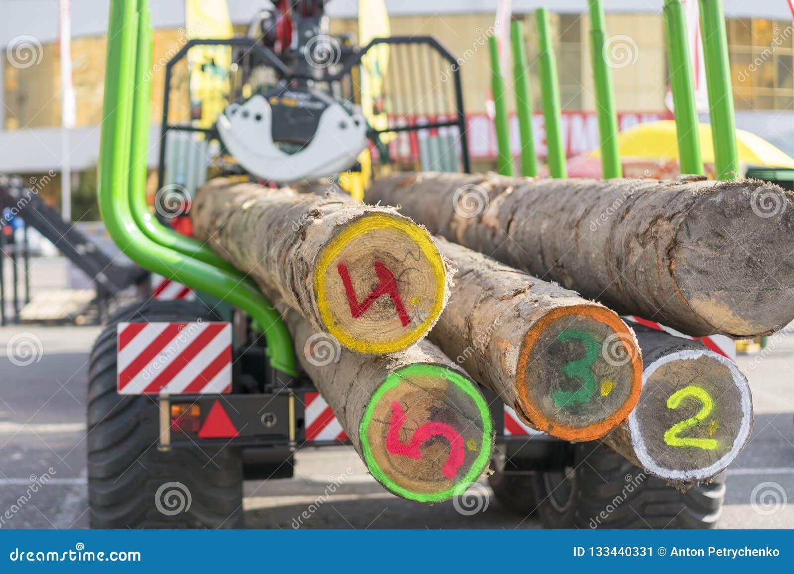 Transport de camion d astuce de bois de construction scié Le camion transporte des rondins, sur la route Des rondins de coupe son