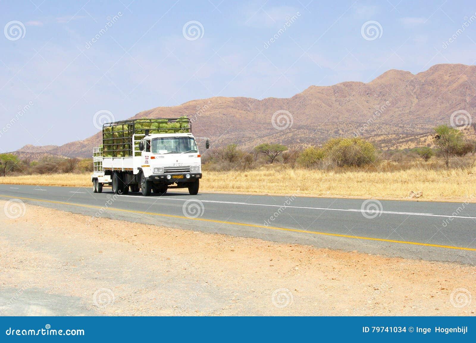 Transporte comercial del camión, Namibia