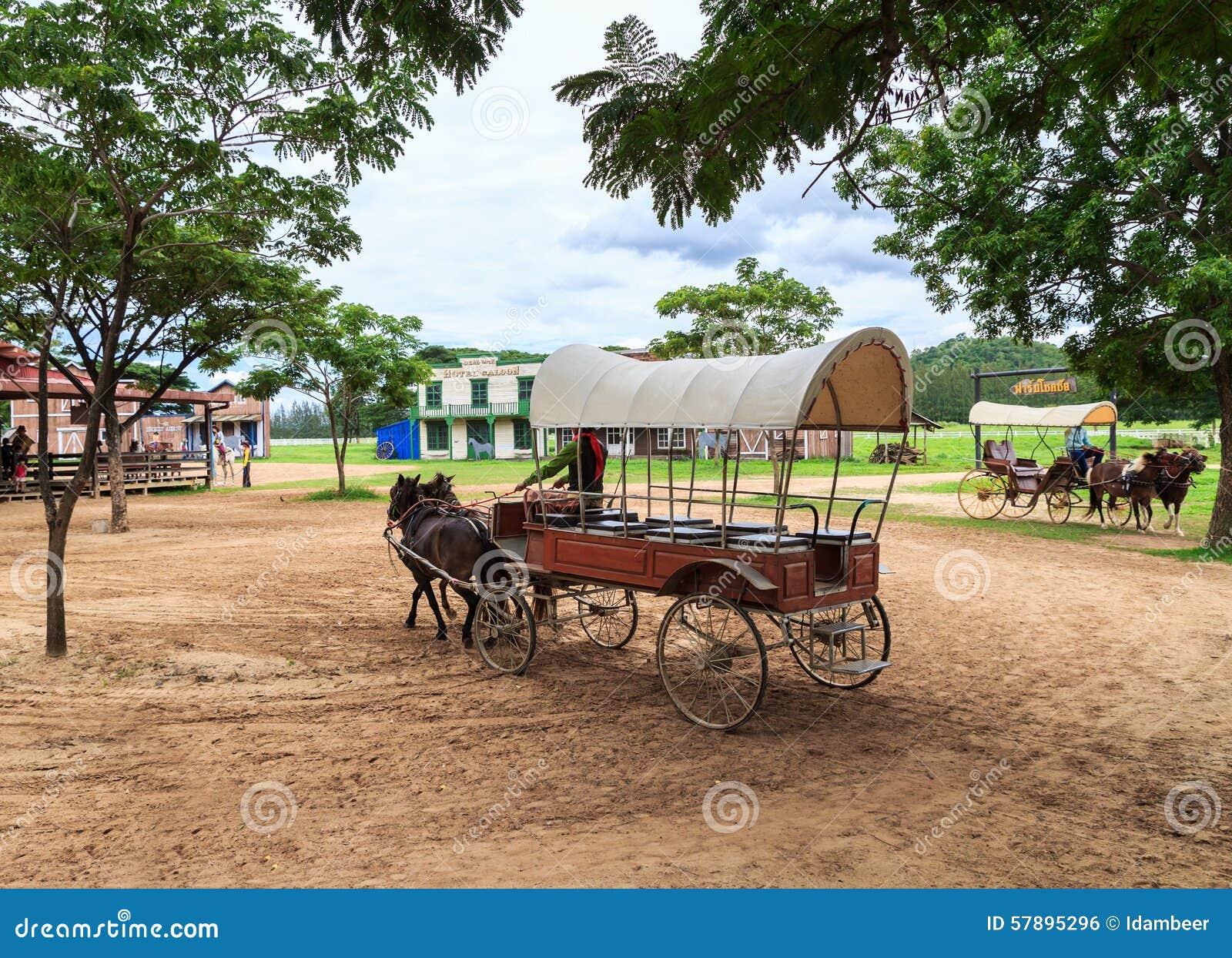Transporte do cavalo de equitação da mostra da autoridade