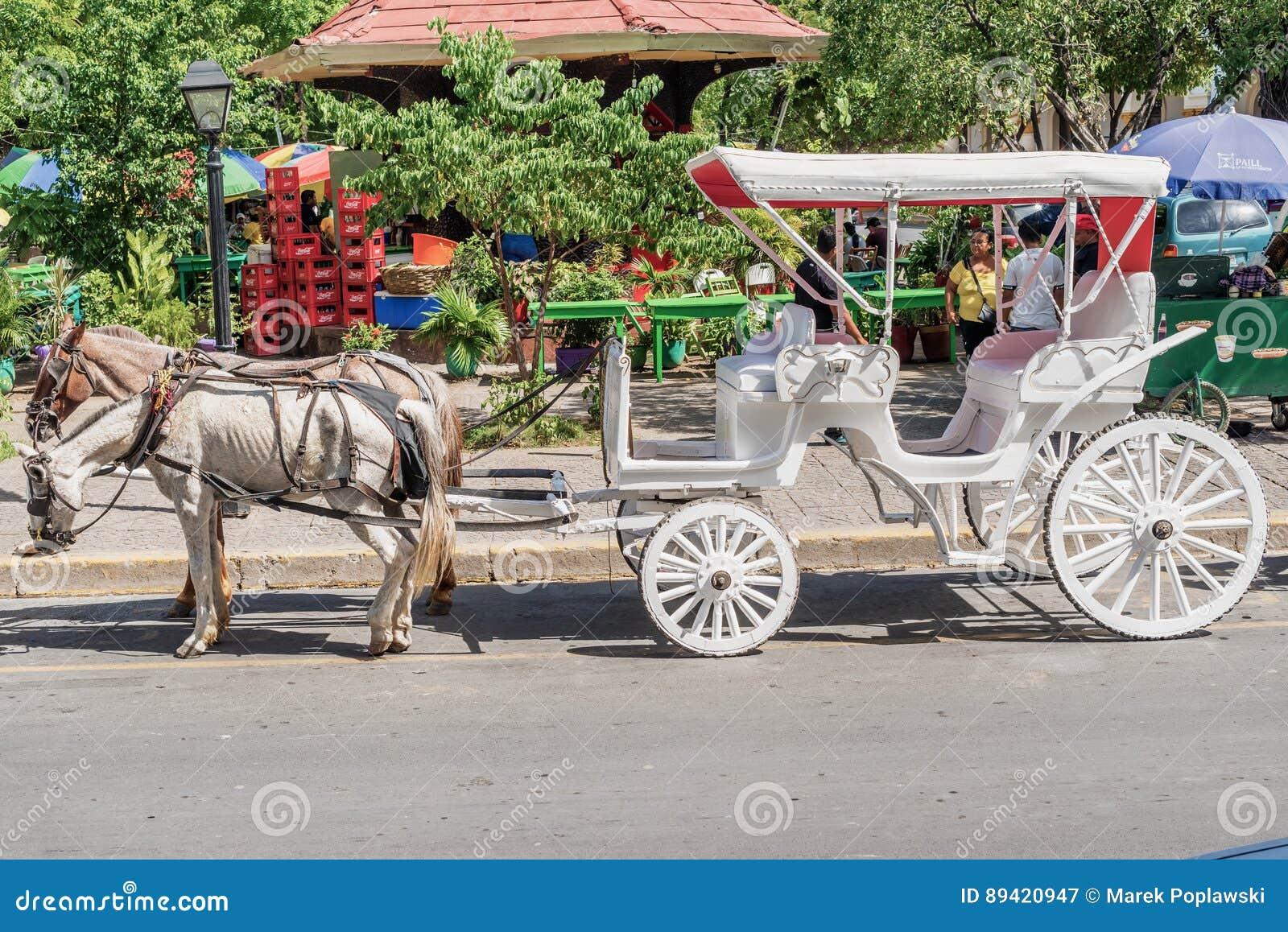 Transporte do cavalo no Central Park em Granada, Nicarágua