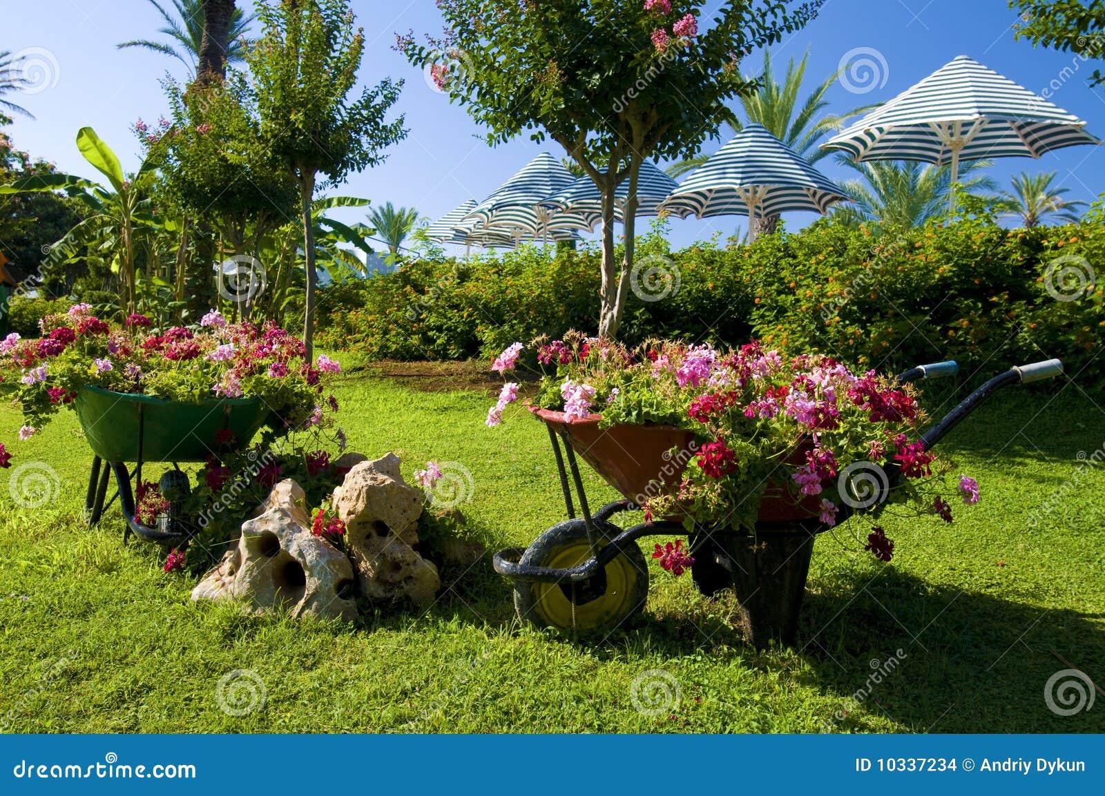 transporte en charrette le jardin de fleur images stock image 10337234. Black Bedroom Furniture Sets. Home Design Ideas