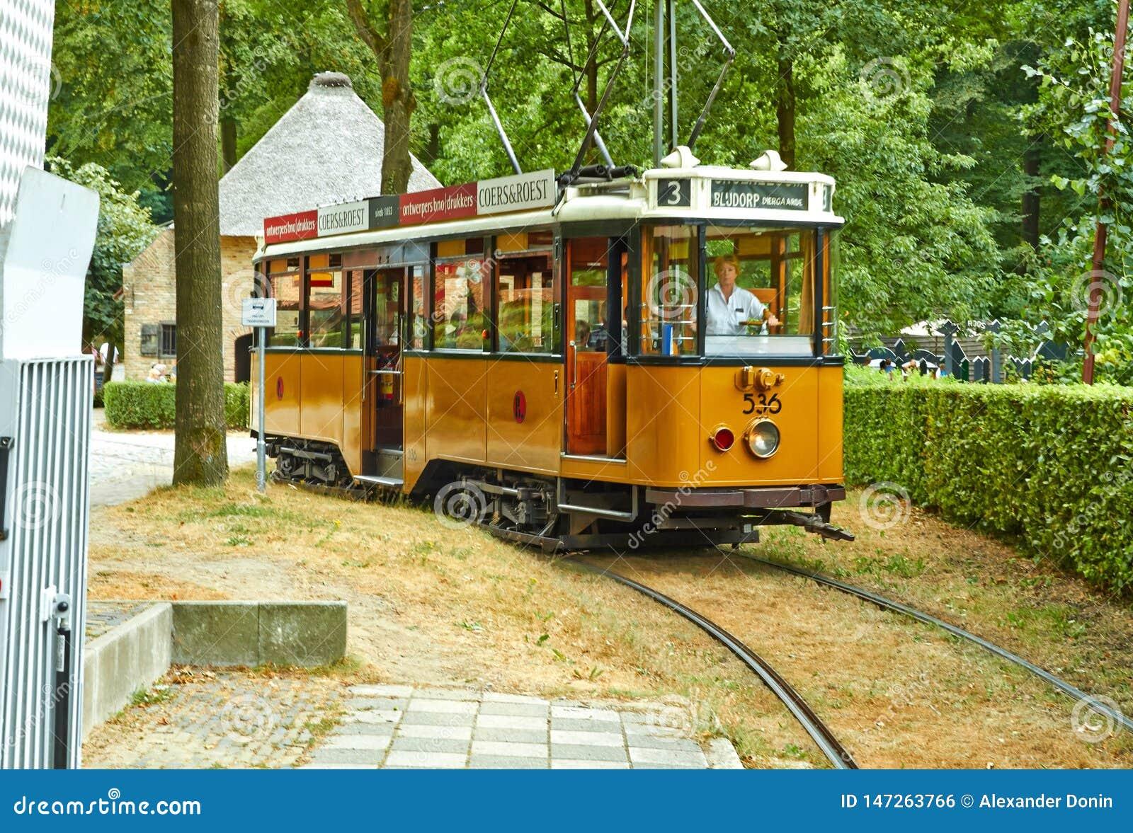 Tranvía en el parque del verano