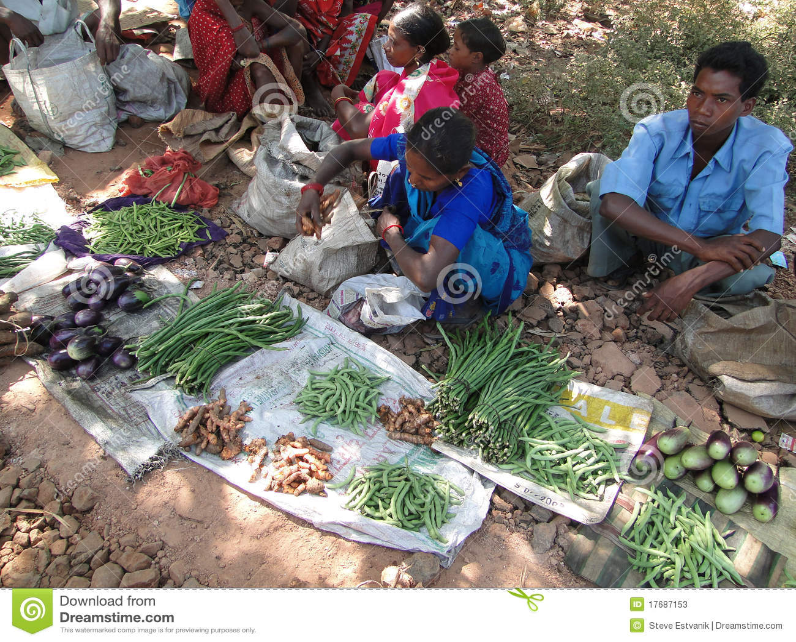 Tranzakcja plemienni warzyw wieśniacy