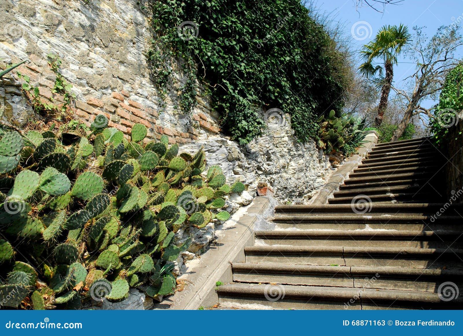 De Mooiste Trappen : Wat is voor jou tot dusver de mooiste vrije trap goal van dit wk