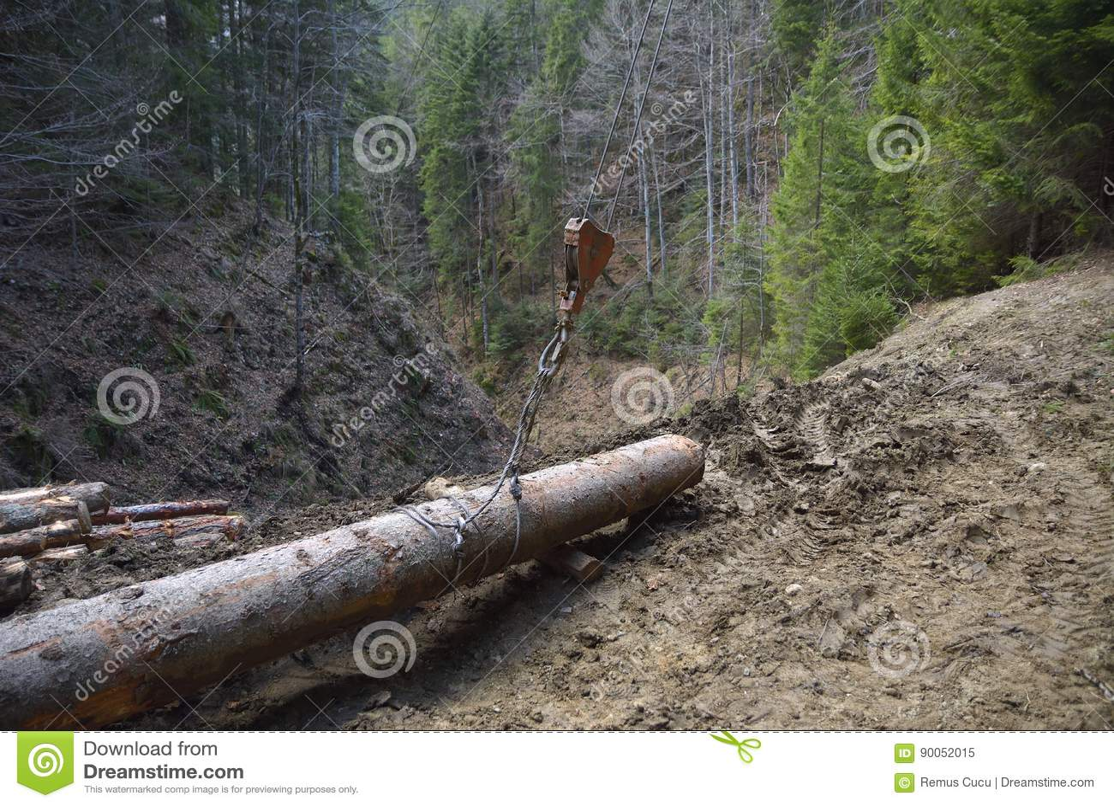 Trasporto del legname in macchina la cabina di funivia nel for Cabina del biscotto di marthastewart com