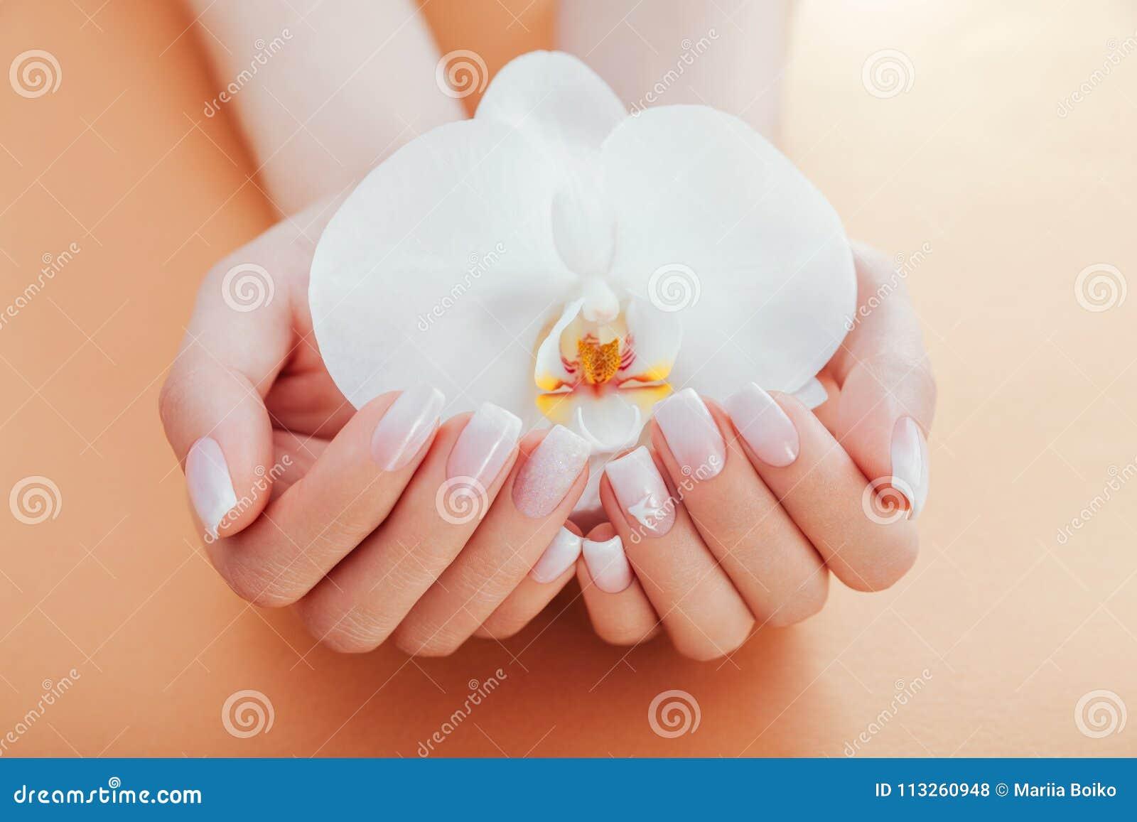 Tratamento de mãos francês de Ombre com a orquídea no fundo alaranjado A mulher com tratamento de mãos francês do ombre branco gu