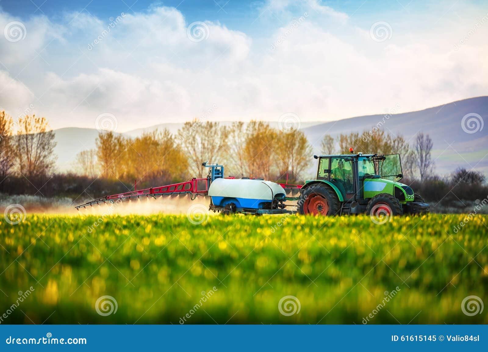 Trator de cultivo que ara e que pulveriza no campo verde