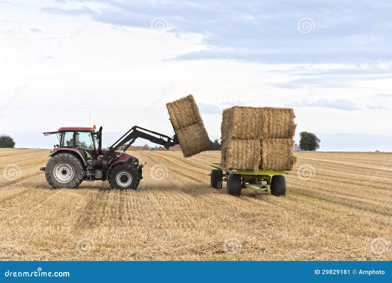Trator que trabalha no campo