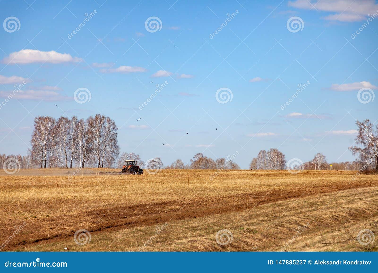 Trator vermelho com um arado arrastado para segar e remover ervas daninhas de campos para a agroind?stria da cor amarela sob o c?