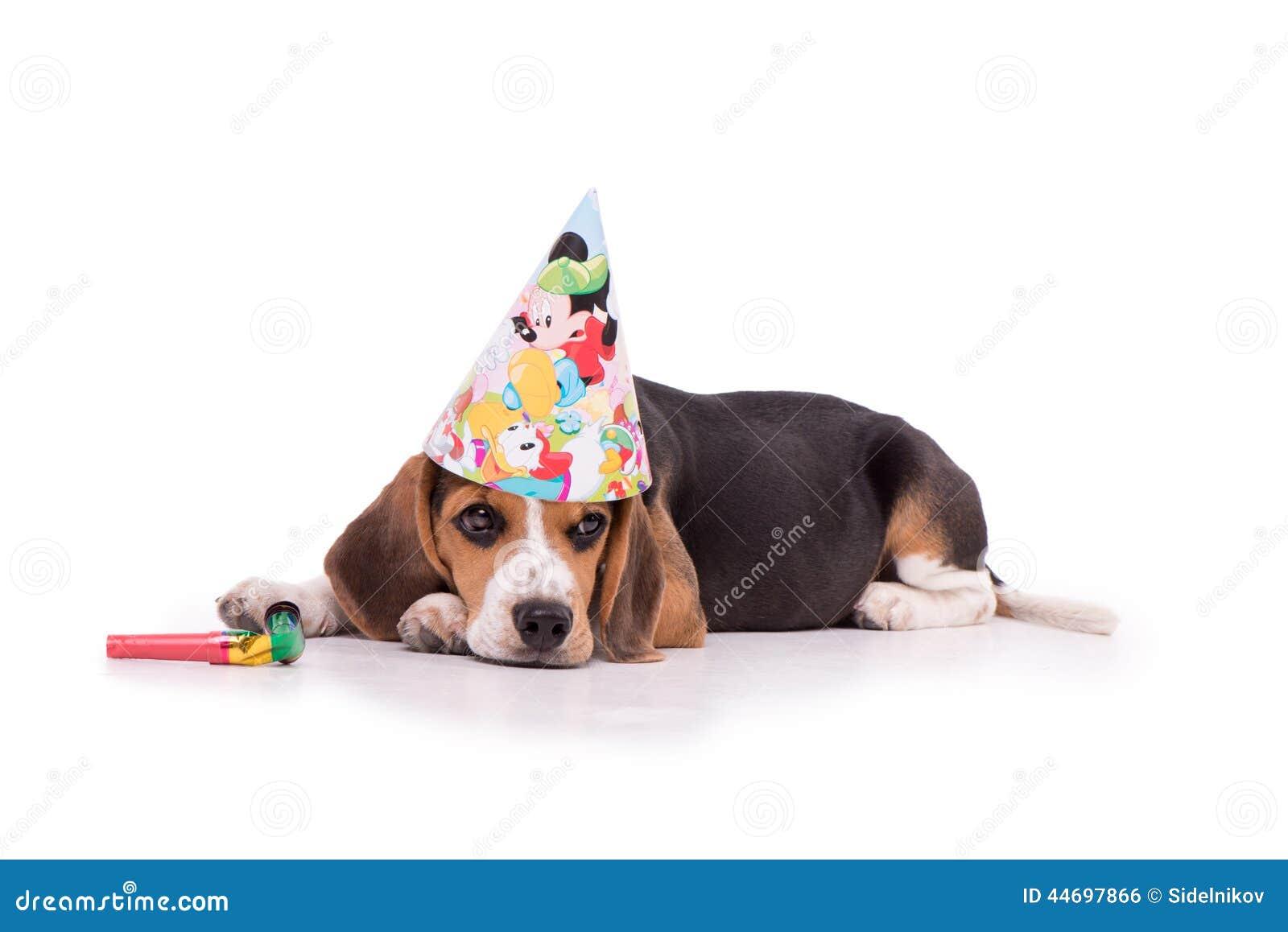 Trauriger Geburtstag