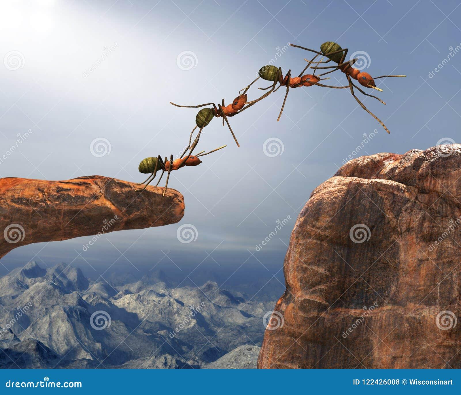 Travail d équipe, équipes, Team Work, fourmis