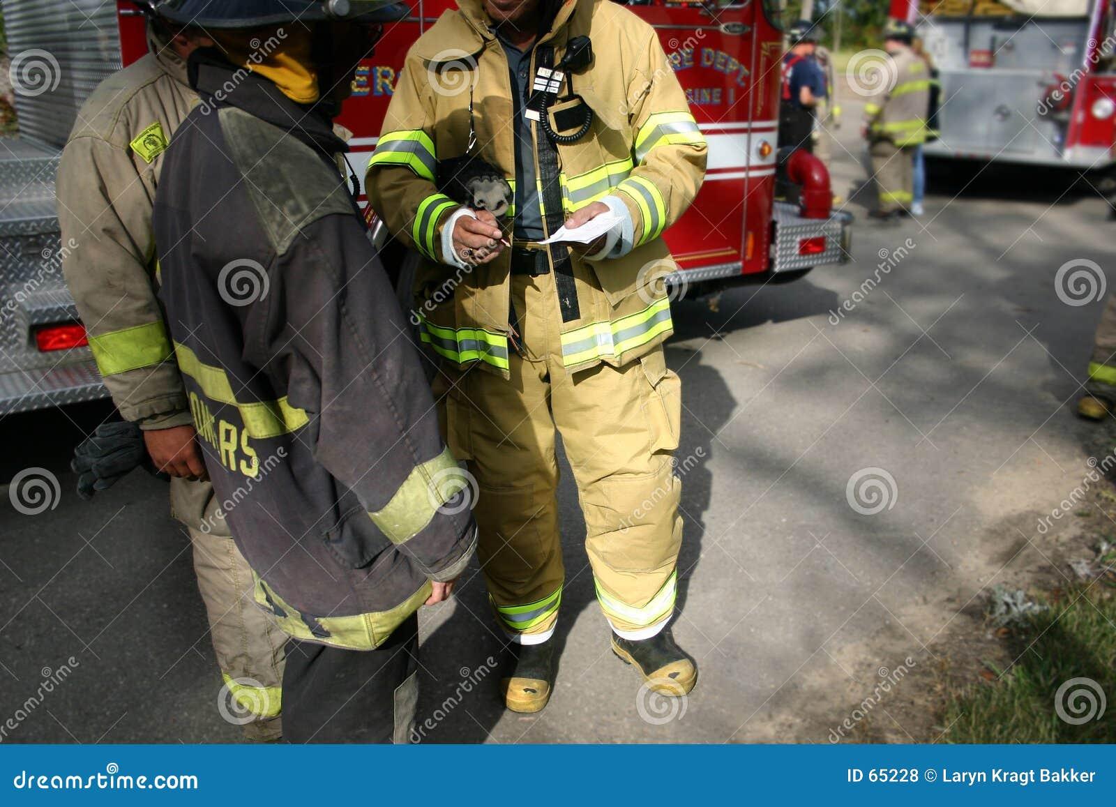 Download Travail D'équipe (sapeurs-pompiers) Photo stock - Image du personnel, planification: 65228