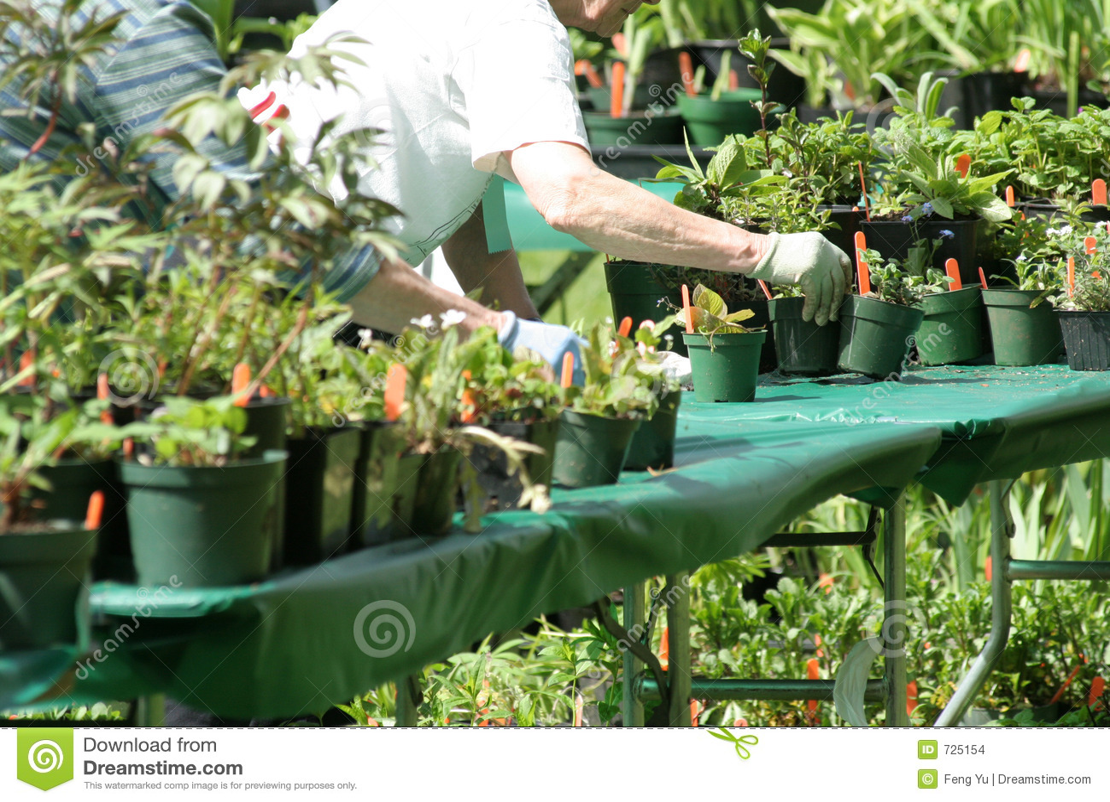 Travail de jardin