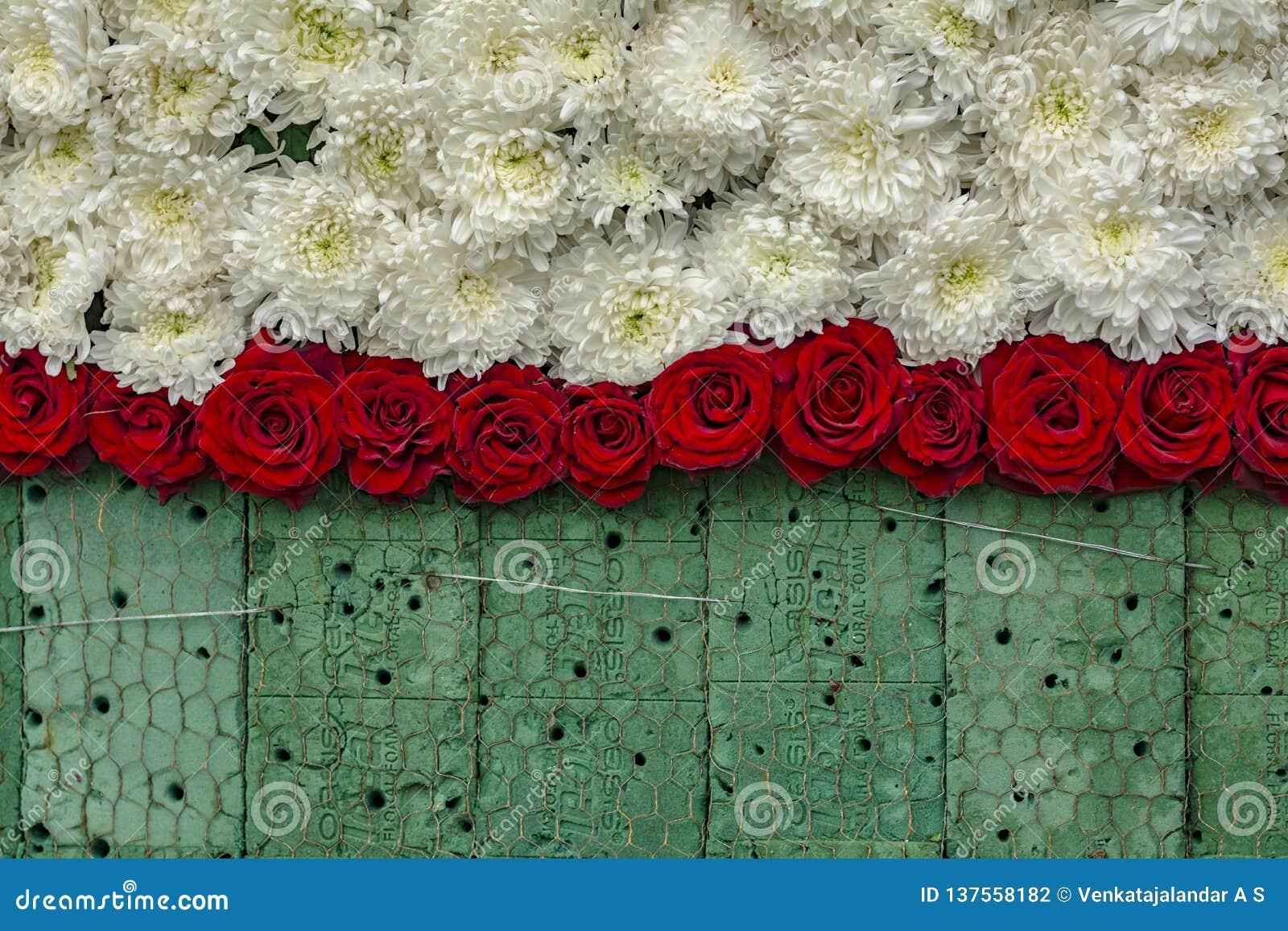 Travail en cours : Mur de Rose Flowers sur la mousse florale