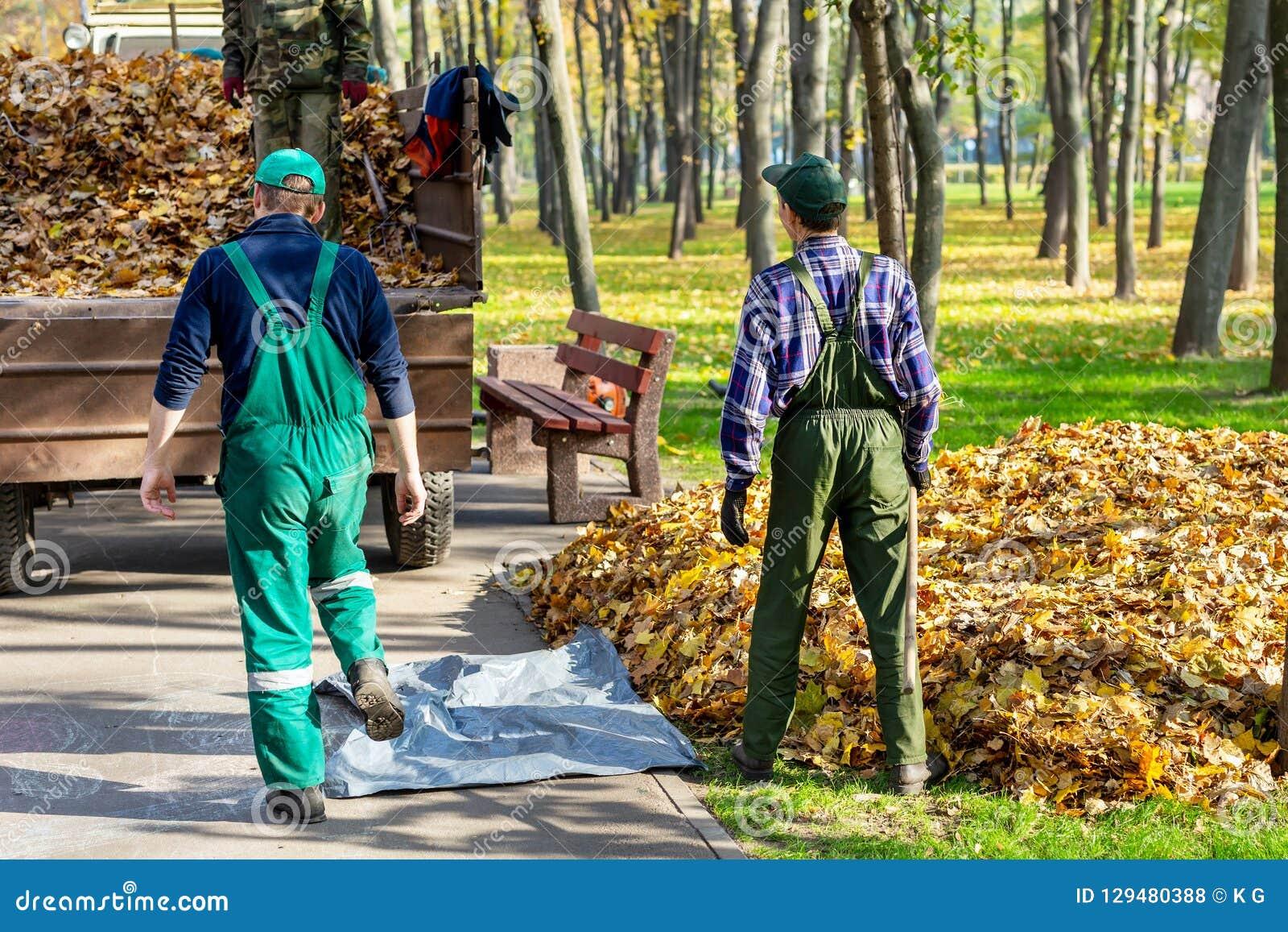 Travailleurs enlevant les feuilles tombées en automne dans le parl de ville nettoyage saisonnier de feuillage dans la chute Déche