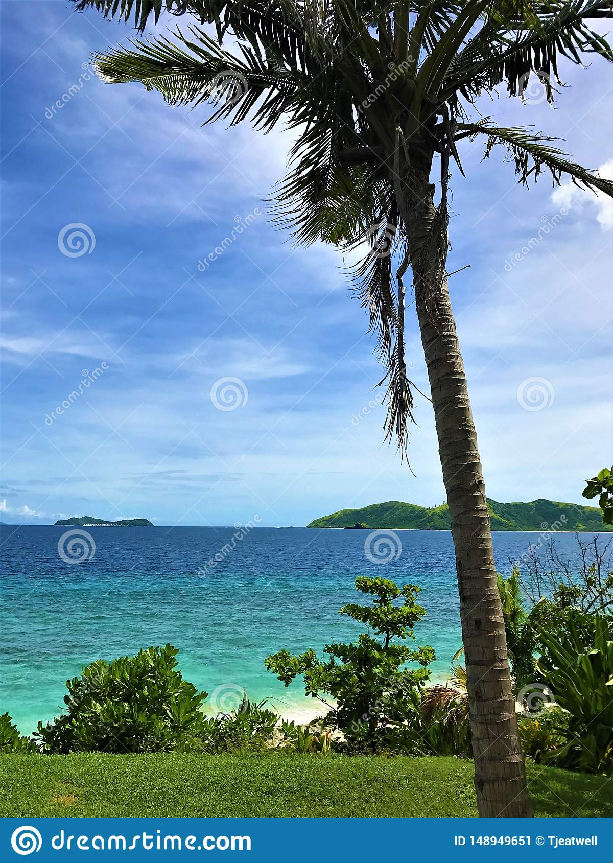 Travel Resort with palm tree and view looking out at the sea