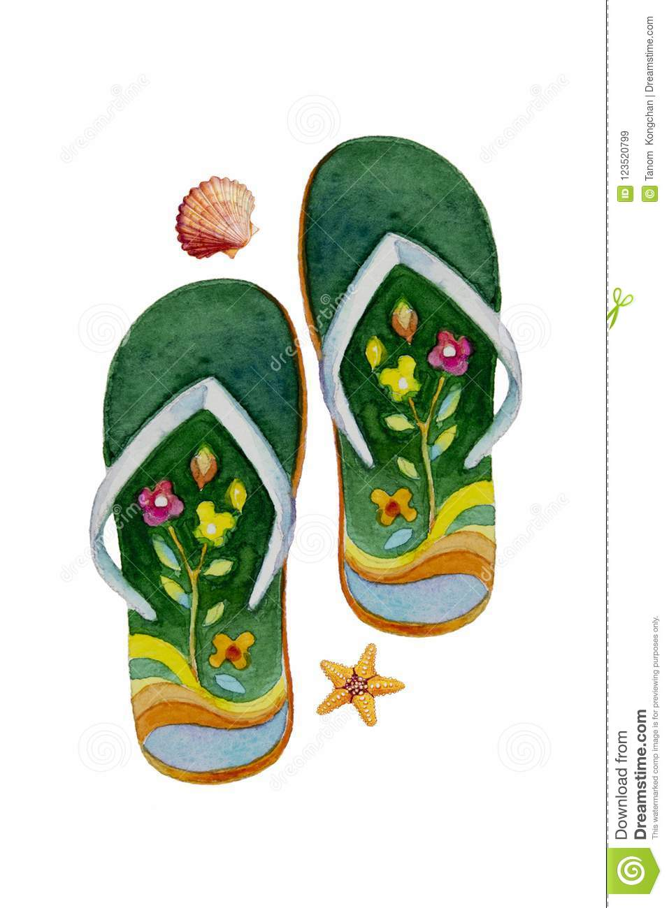 0e9201ce36cbd Watercolor painting illustration of pair of sandals