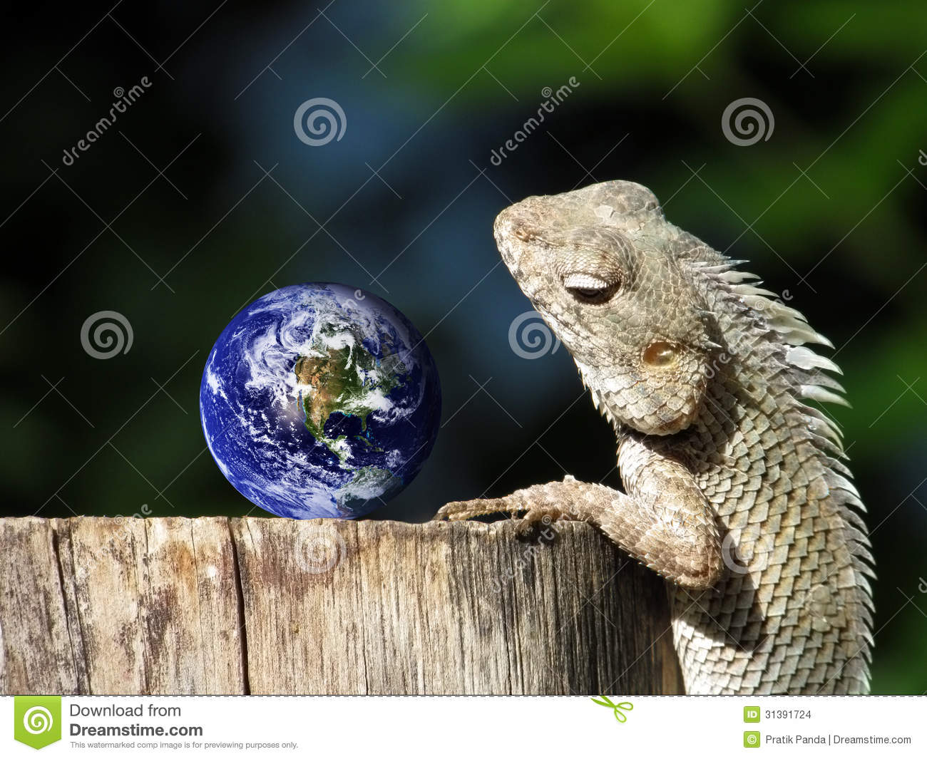 Travel tourism concept the chameleon represents a person staring at