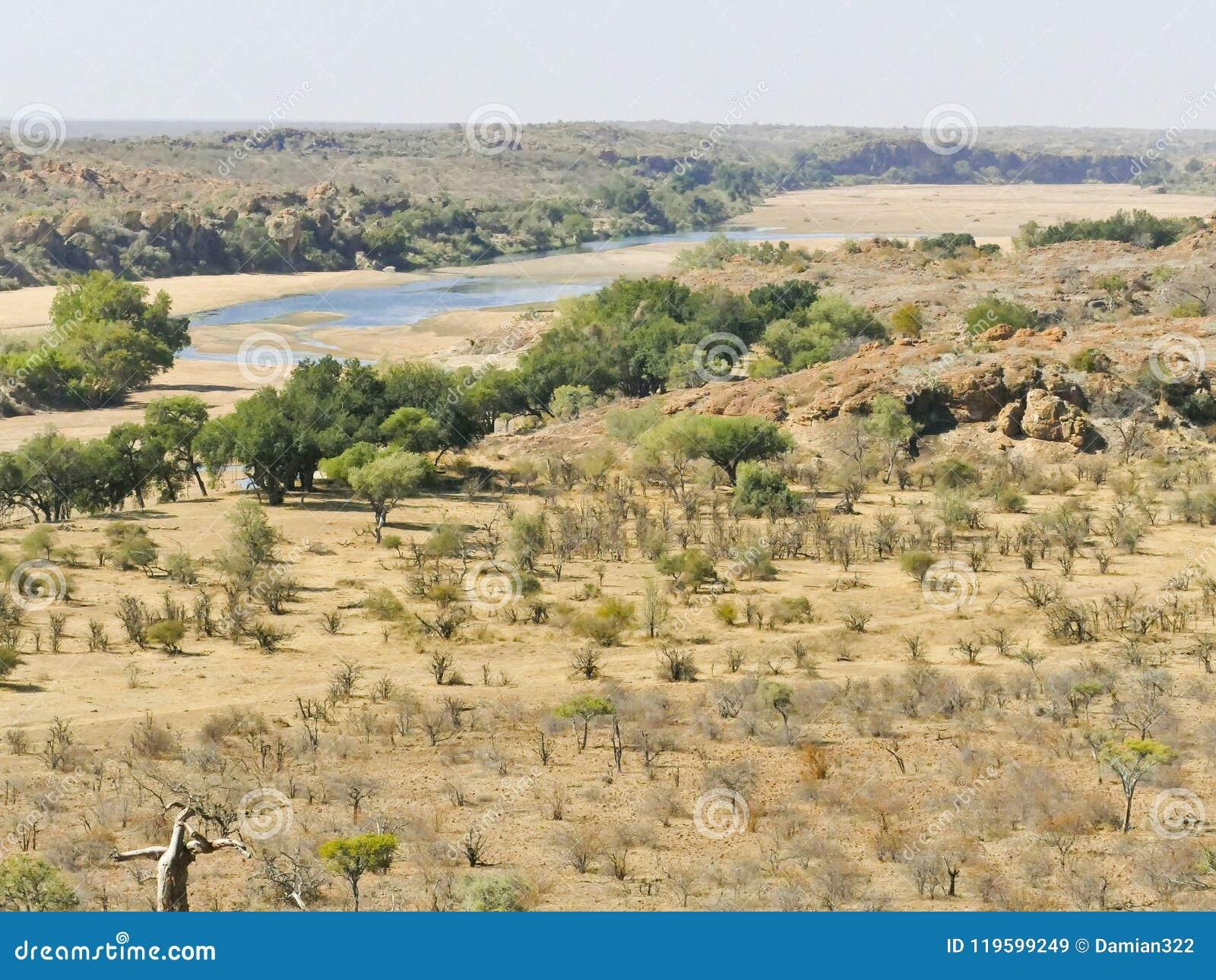 Traversée de la rivière du Limpopo le paysage de désert de la nation de Mapungubwe