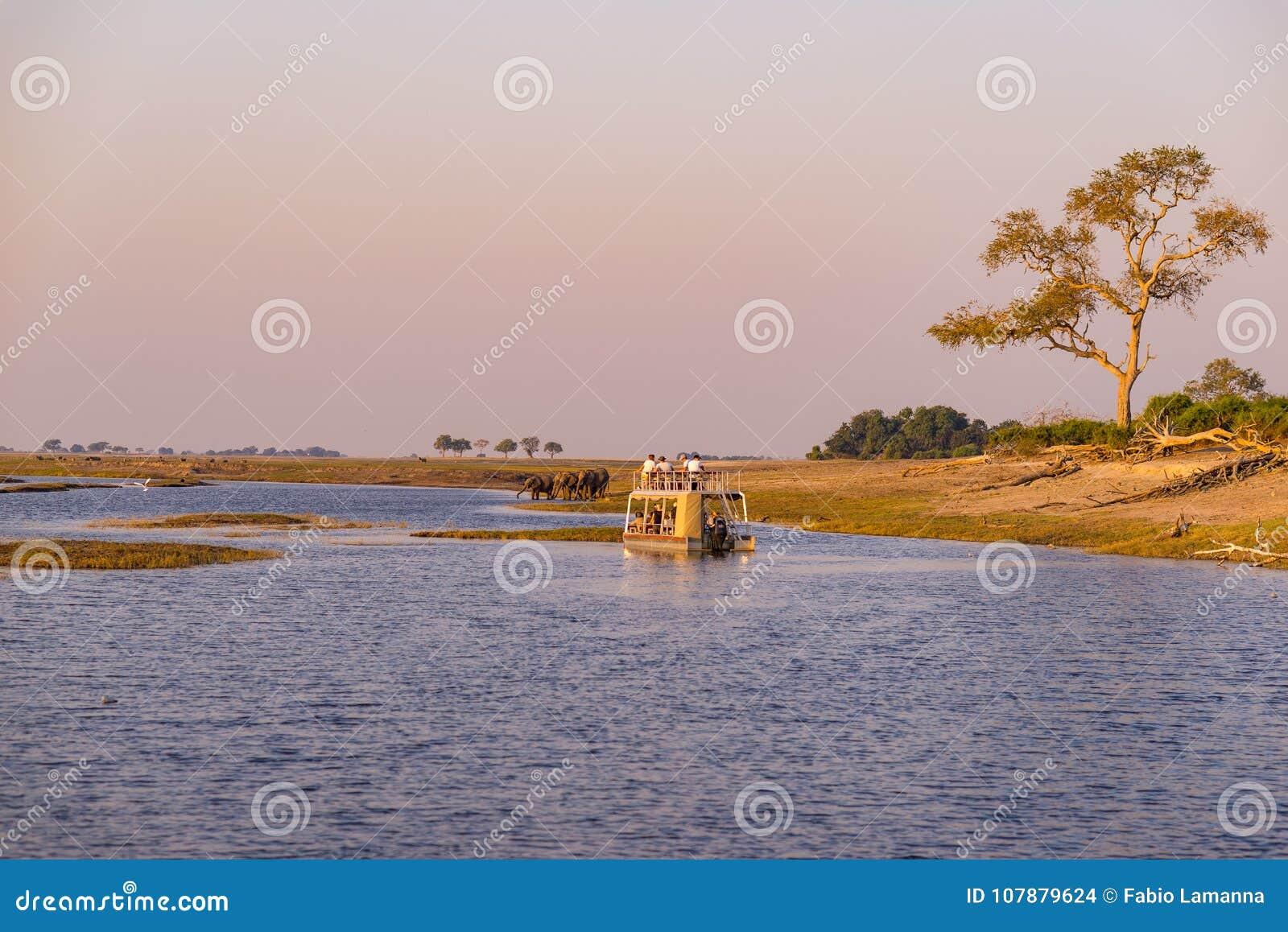 Travesía del barco y safari de la fauna en frontera del río de Chobe, Namibia Botswana, África Parque nacional de Chobe, reserva