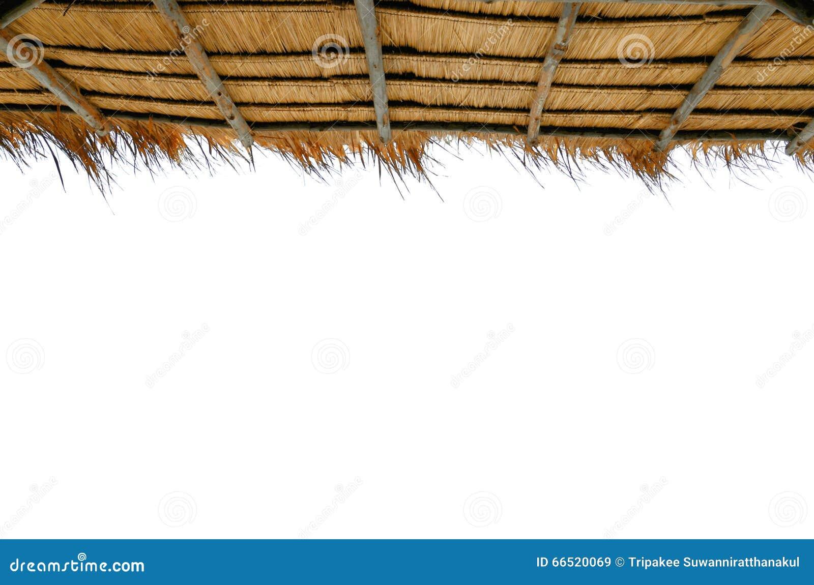 Trawa dachy