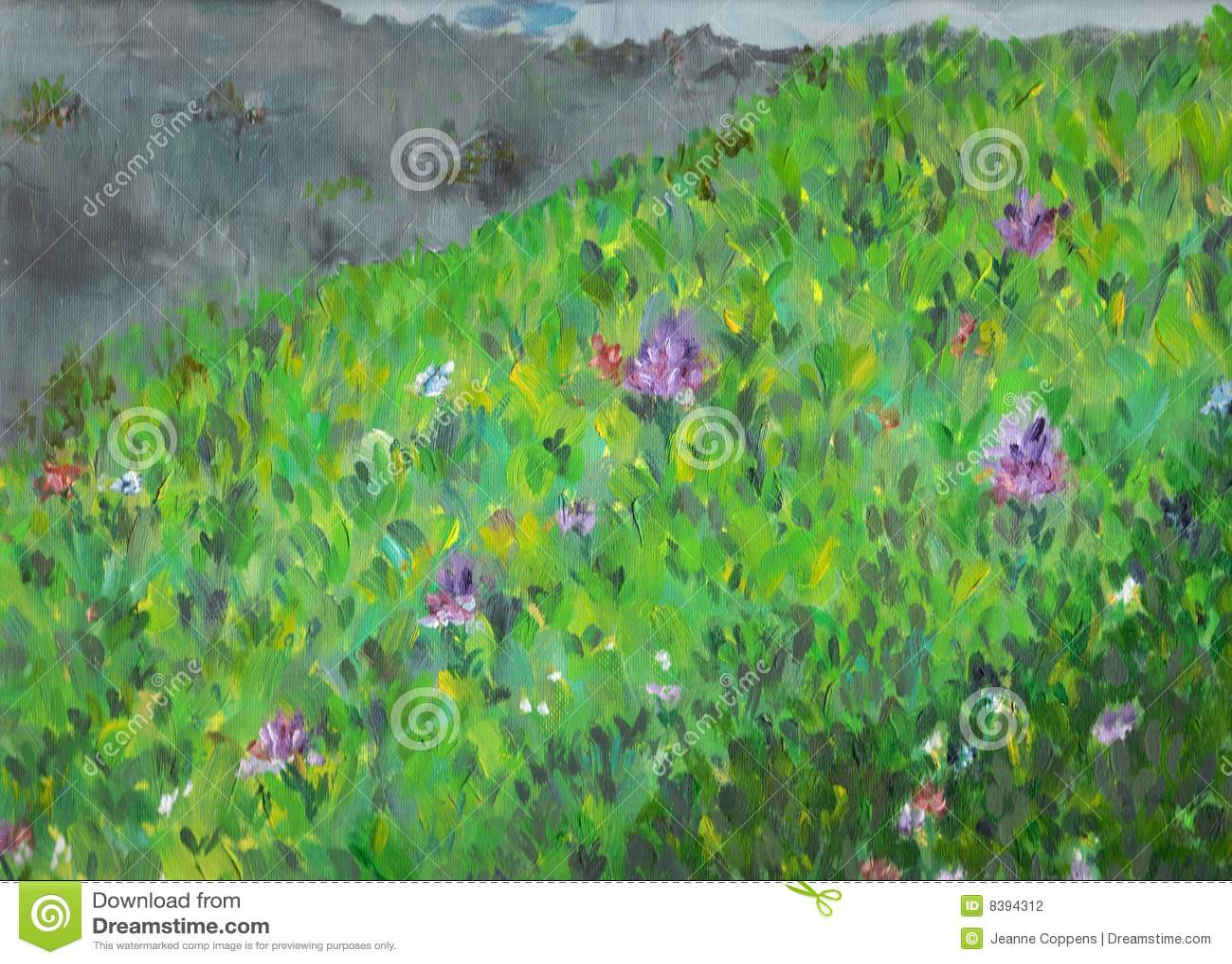 Trawy zieleni łąka