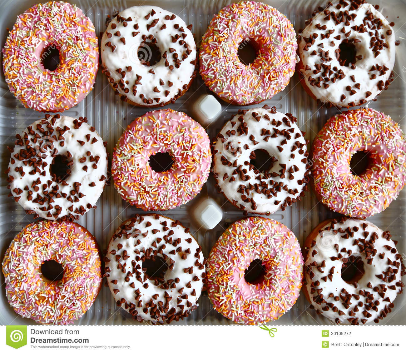 Tray Of Ring Donuts Stock Photography Image 30109272