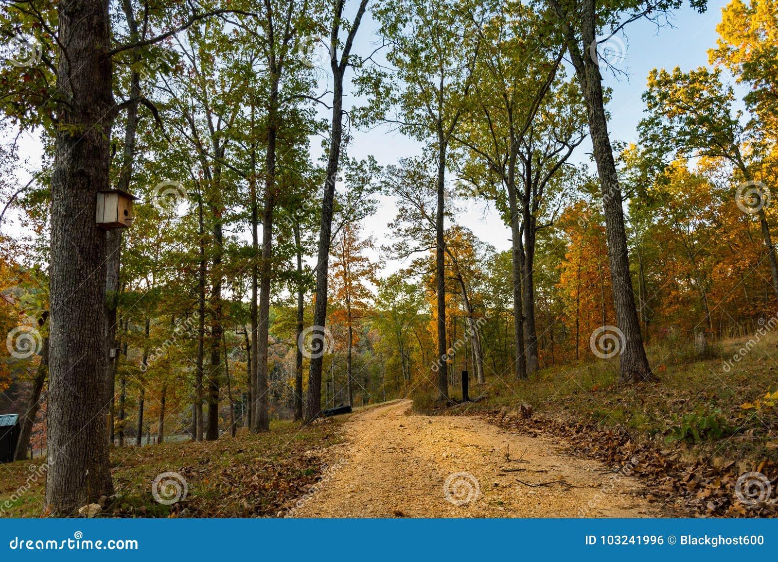 Trayectoria de Forrest en las montañas de Ozarks de Missouri