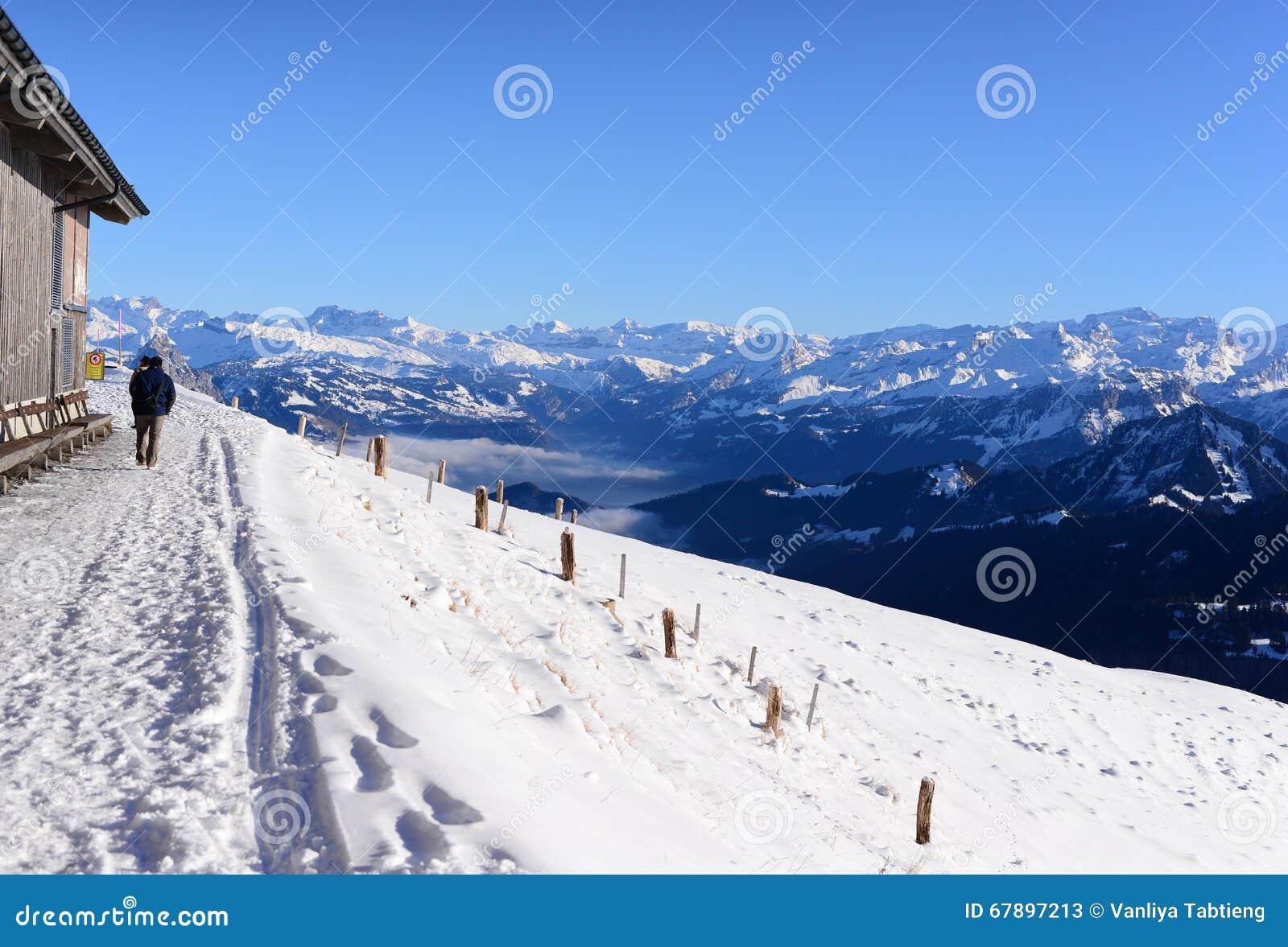 Trayectoria que camina con las montañas de la nieve, el Rigi Kulm de la nieve