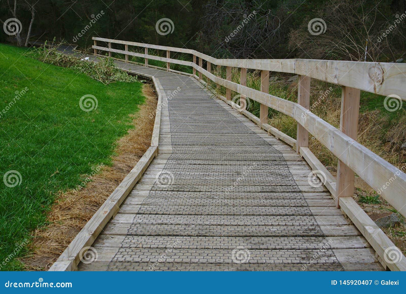 Trayectoria que camina de madera en bosque