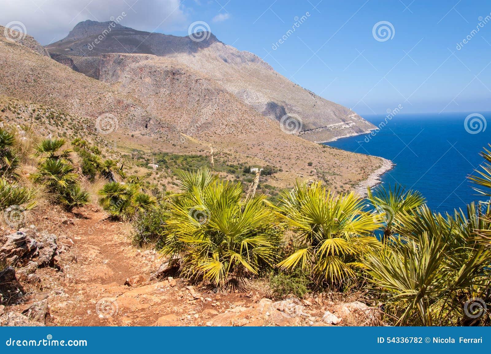 Trayectoria y pequeñas palmeras con las montañas estériles y el mar azul