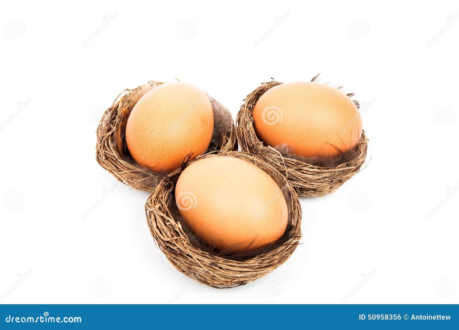 Tre fågelreden med ett påskägg i det