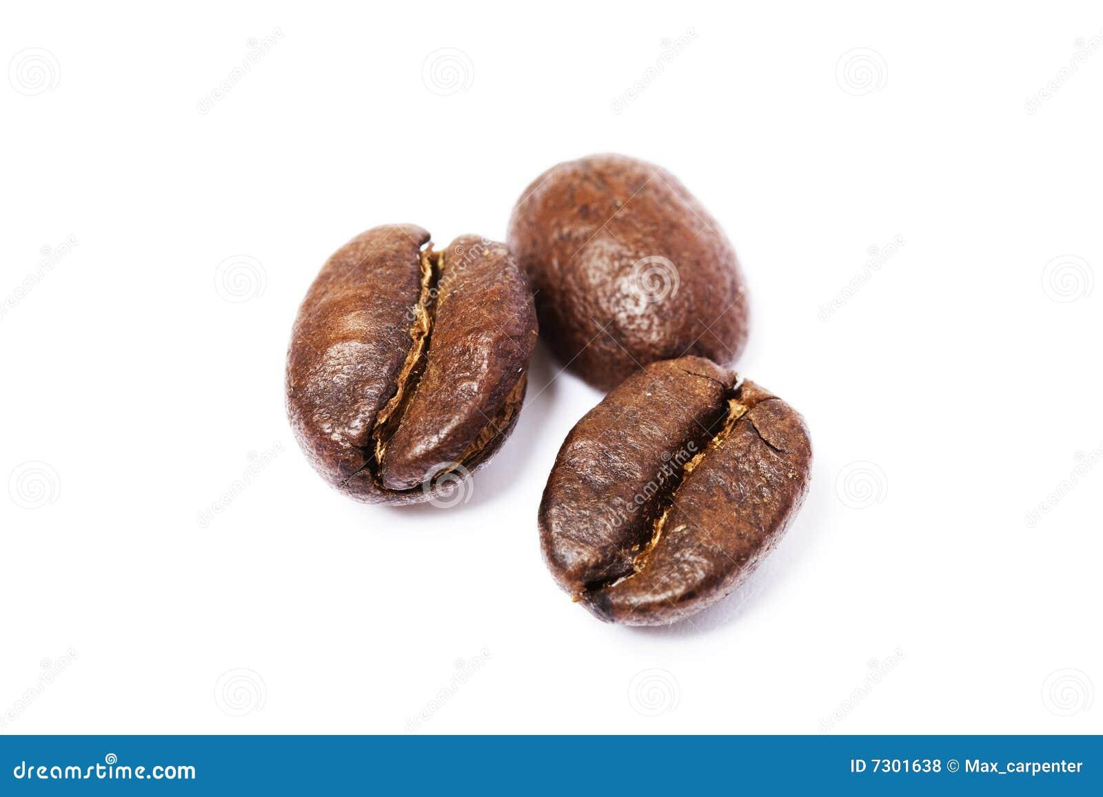 Tre fagioli del cofee sopra bianco