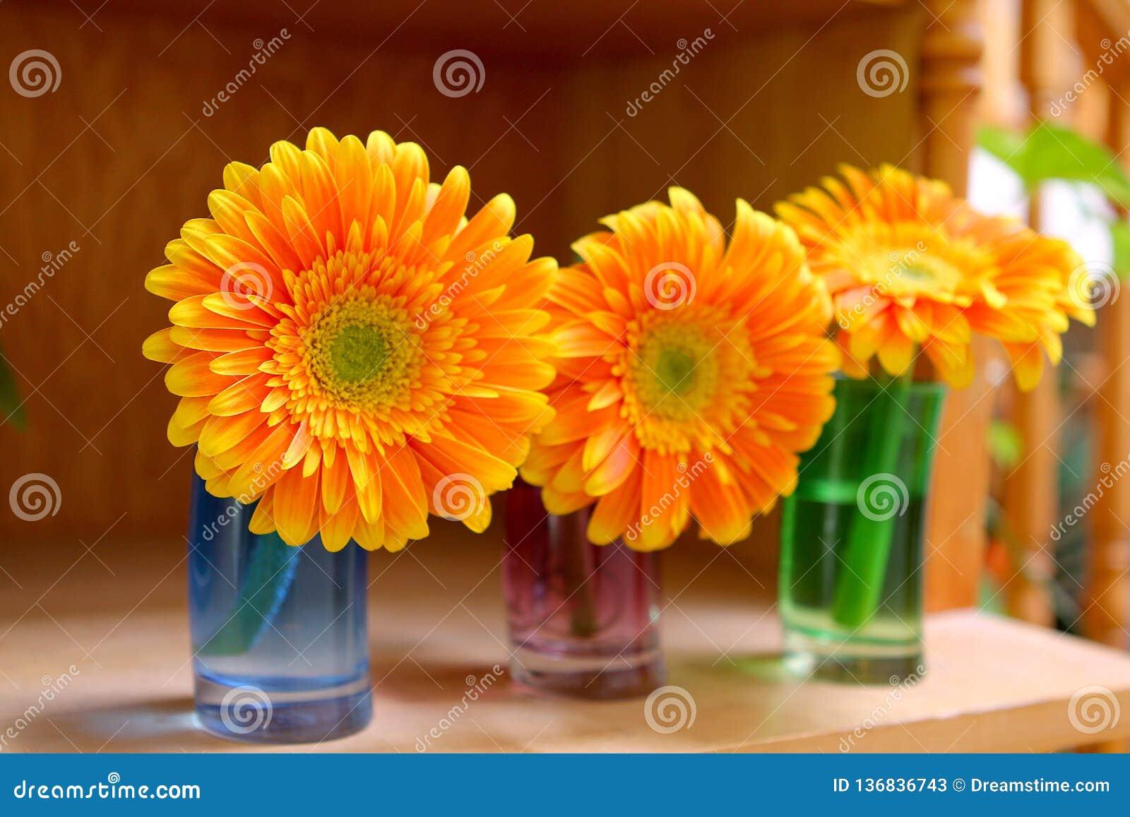 Tre fiori variopinti sullo scrittorio