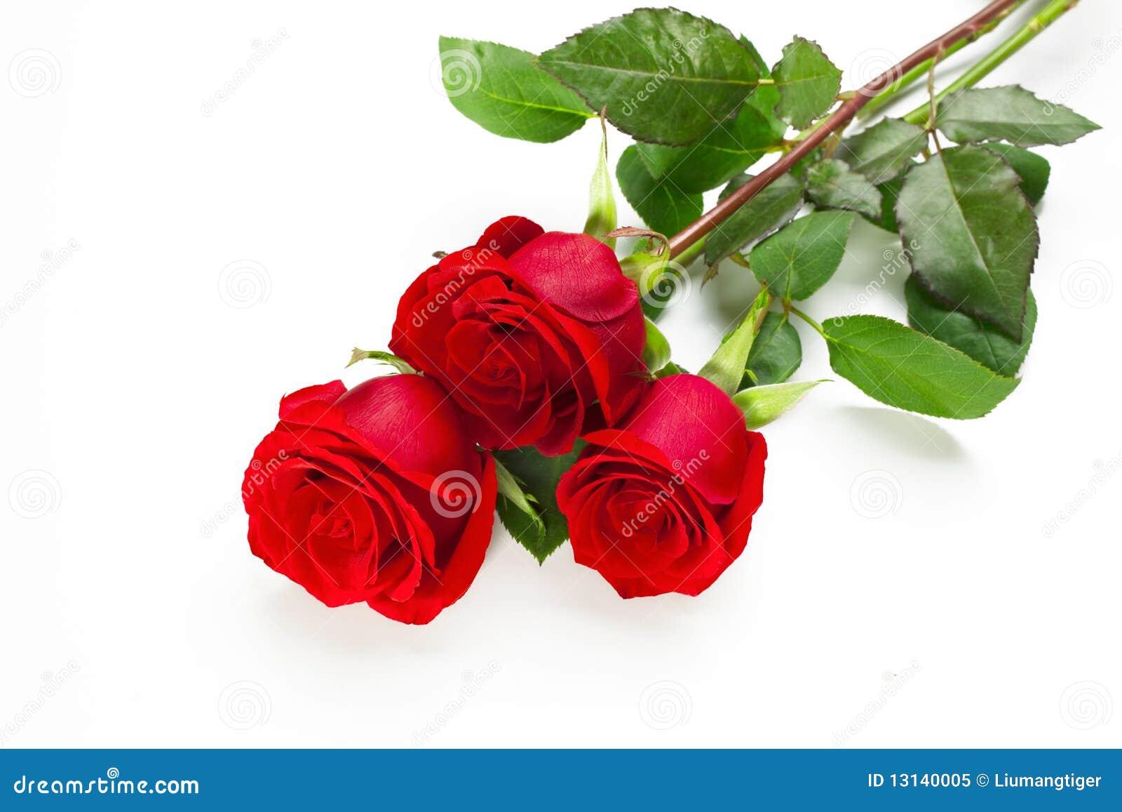 Tre rose rosse