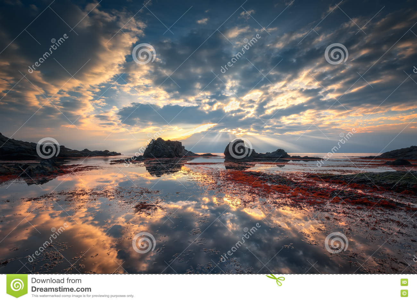 Tre te восхода солнца c d Франции Нормандии пляжа alb утесистое