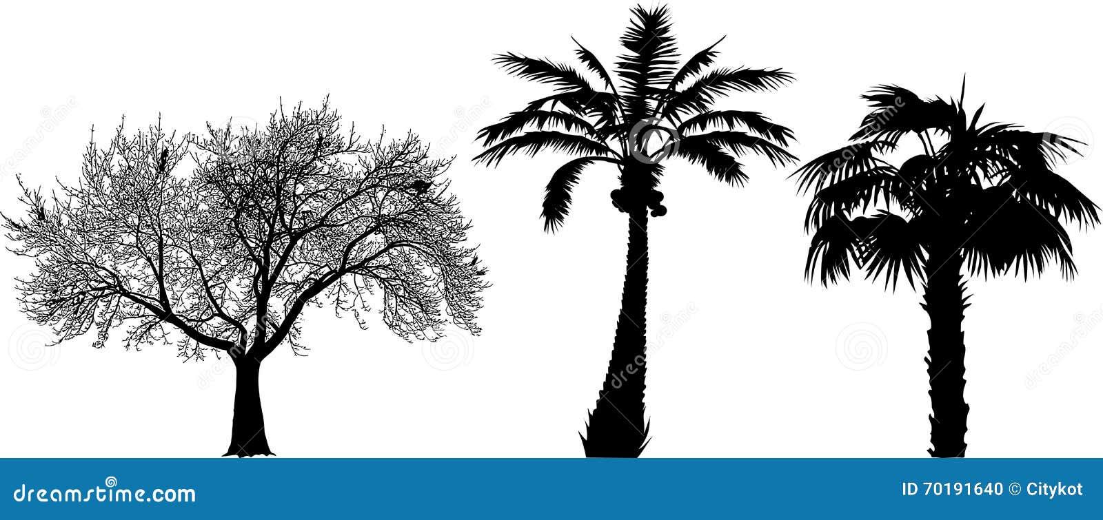 Tre trees