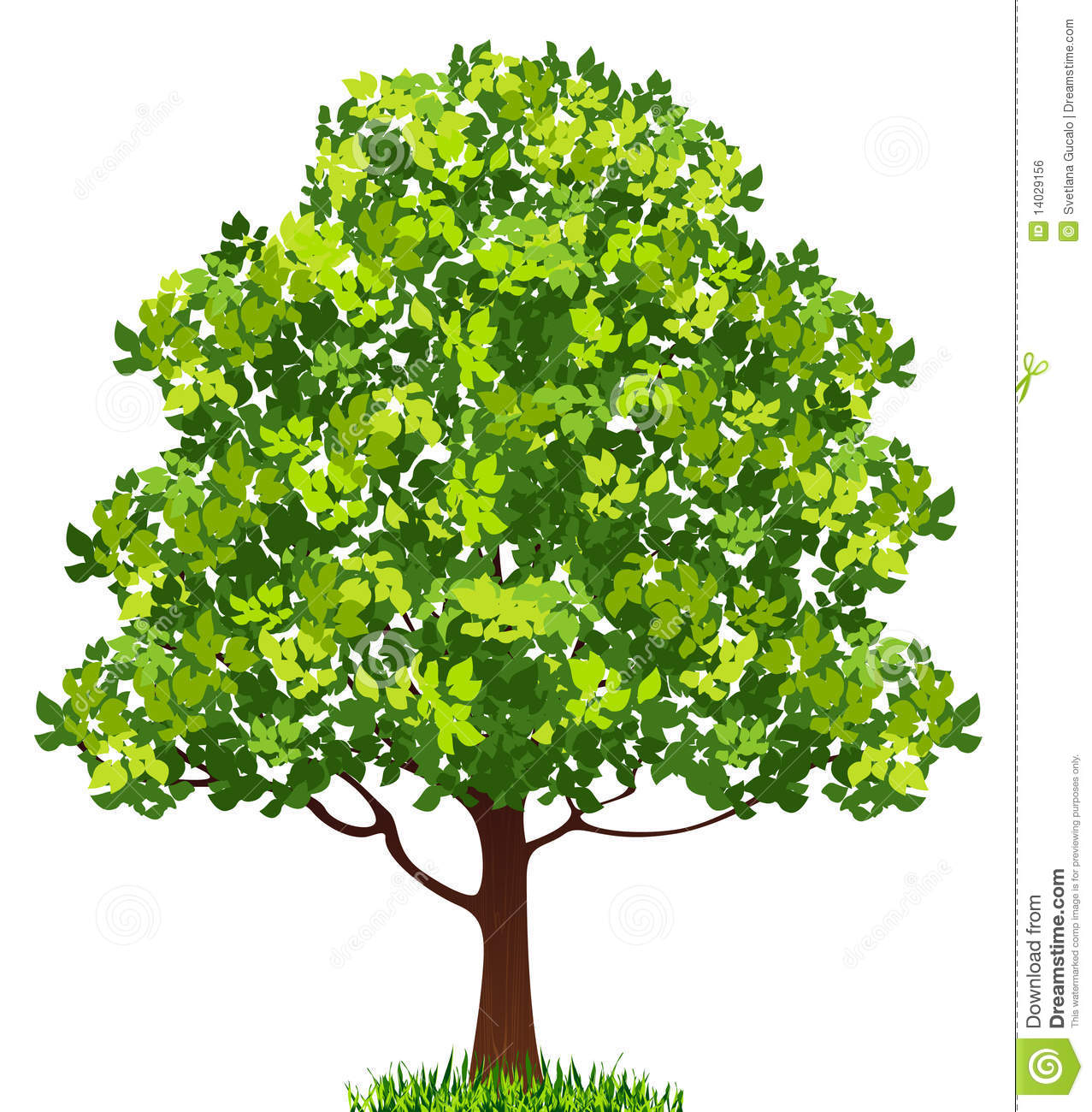 Tree Royalty Free Stock Image - Image: 14029156