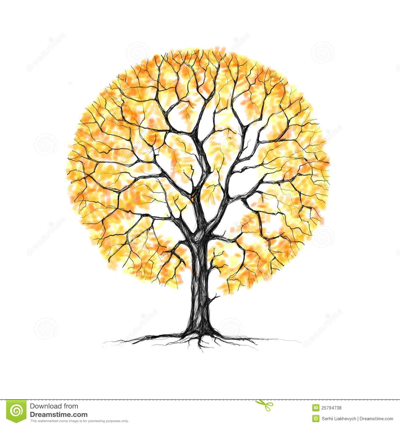 The tree, autumn, drawing stock illustration. Illustration of ... for Fall Tree Drawing  166kxo