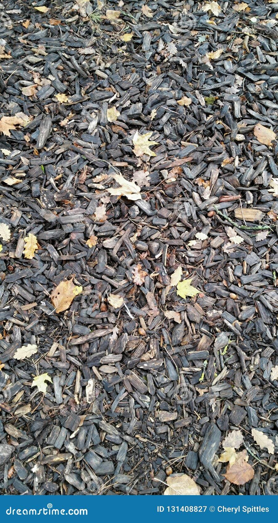 Tree bark chippings